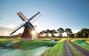 windmolen in Hollands landschap